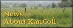News about KanColl